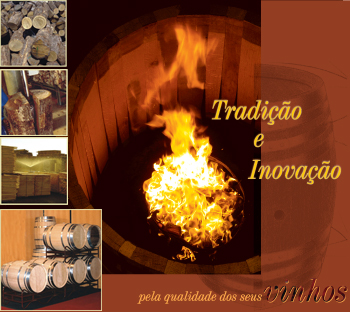 Tradition and Inovation for the quality of your Wines